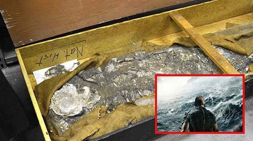 'Noé', un esqueleto de 6.500 años de antigüedad, que sobrevivió al Gran Diluvio