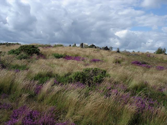 Dans le site mégalithique de Saint-just, le  Four Sarrazin allée couverte