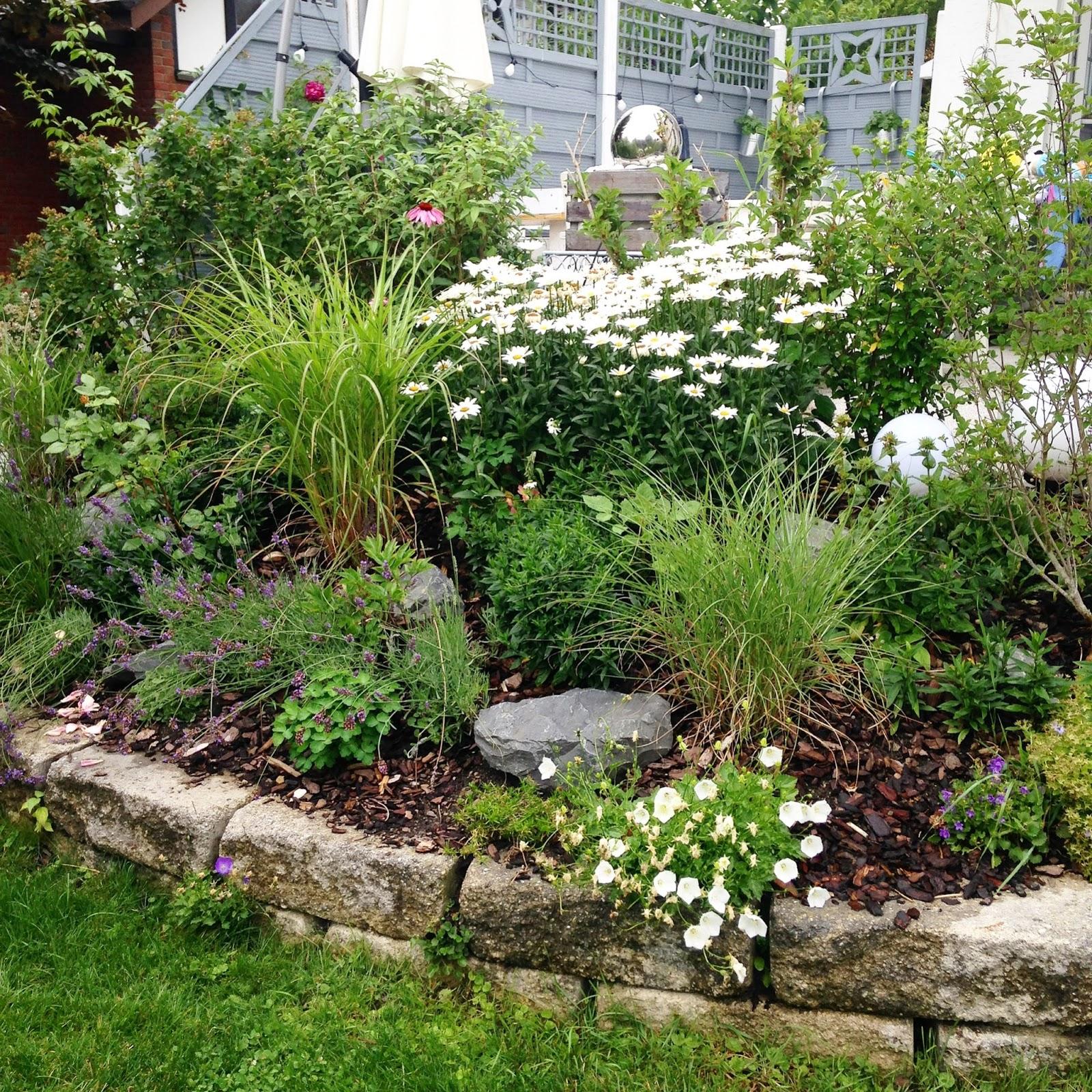Glücksfeder: Sprießen, gießen und genießen: Mein schöner Garten ...