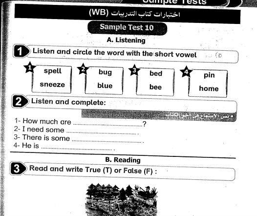امتحانات بيت باى بت فى اللغة الانجليزية للصف الرابع الابتدائى الترم الثانى 2016