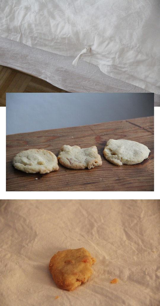 macadamia schokoladen cookies I fräulein text