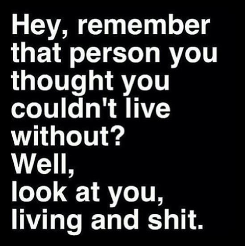 look at you living and shit quote