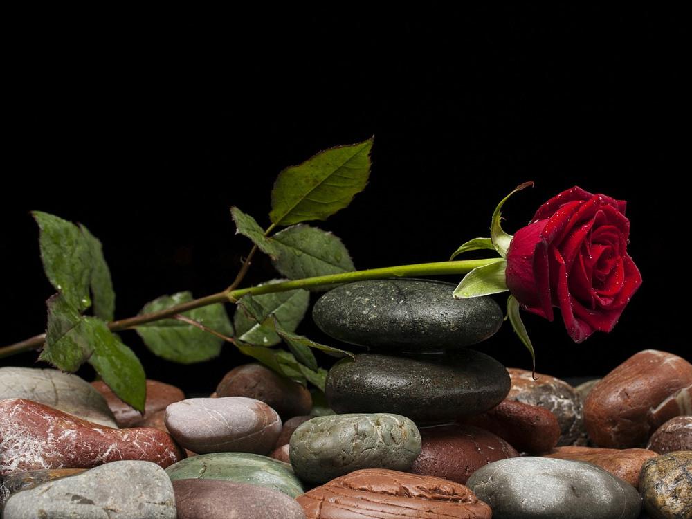 Lupakan Valentine, Lanjutkan Passion