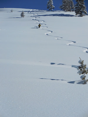Backcountry skiing, Yellowstone National Park