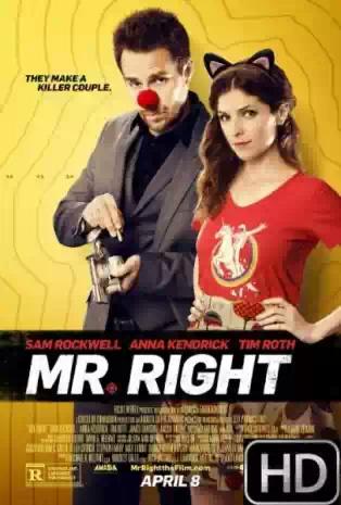 Download Film Mr. Right (2016) Subtitle Indonesia