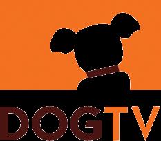 DOGTV SE EXPANDE A MÉXICO a través de izzi