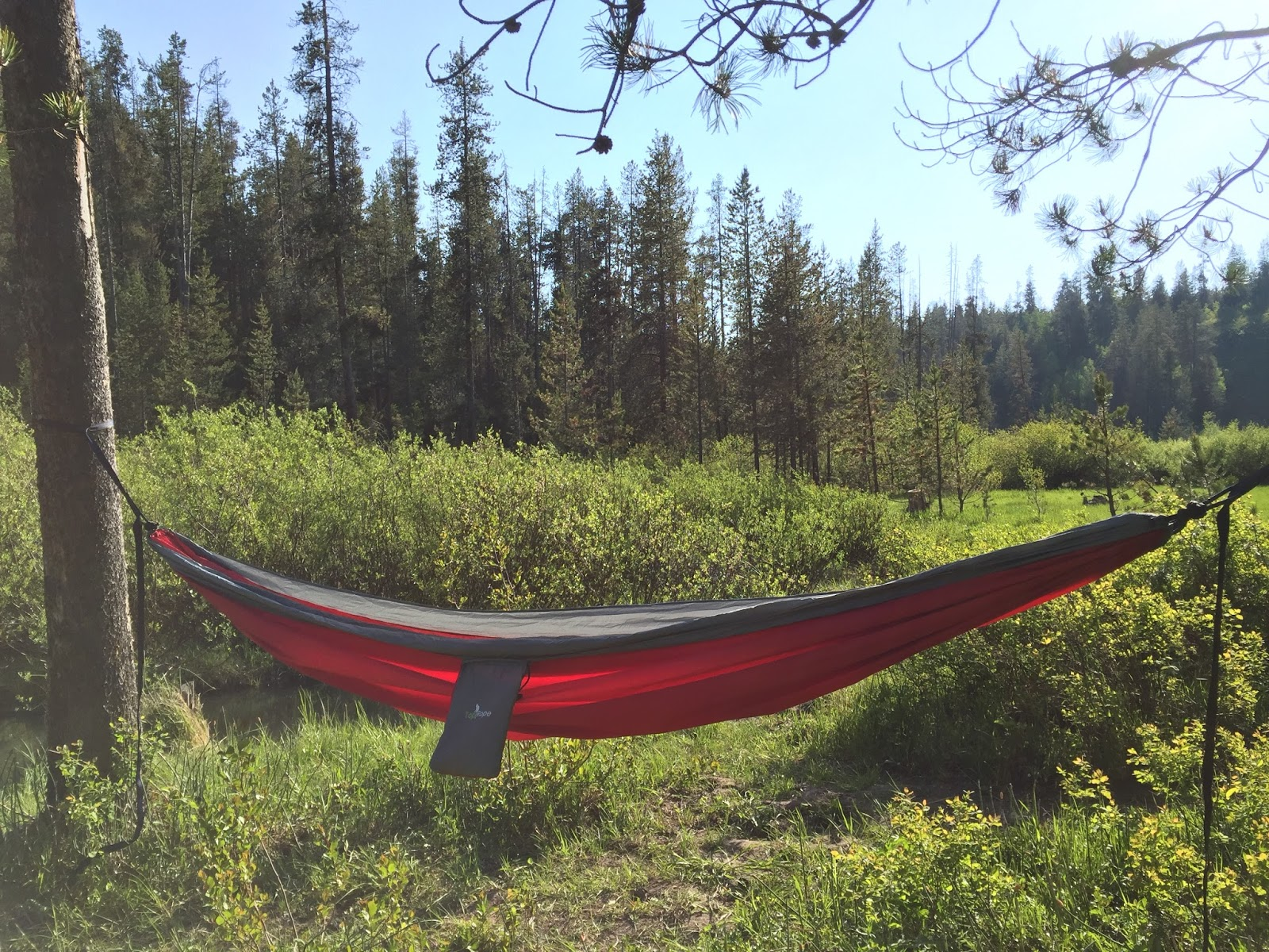 hiking best and reviews hammock trees for rating of camping undefined guide