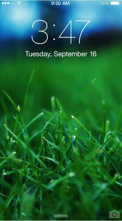 Green Grass Threads Close Up Iphone Xr Wallpaper Wallpaper