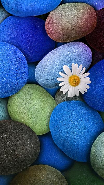 Stone Flower Wallpaper IPhone 7