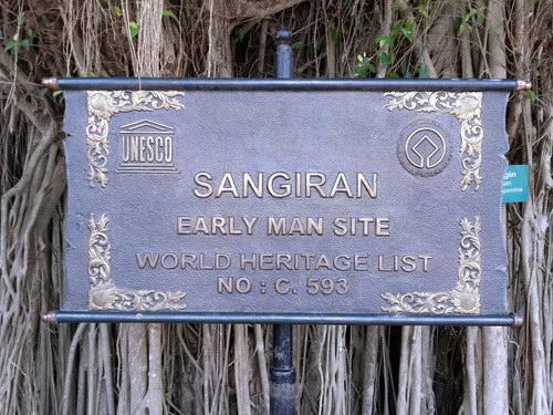 Travel.Tinuku.com Sangiran Museum and paleo sites displaying early human Pithecanthropus erectus and variety ancient life