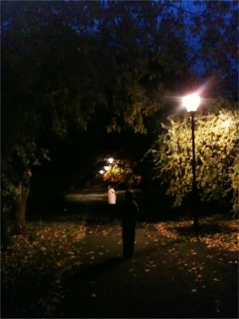 a night walk in the park