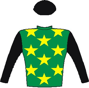 The Conglomerate (Aus) - Silks - Emerald green, yellow stars, black sleeves and cap - Vodacom Durban July 2016