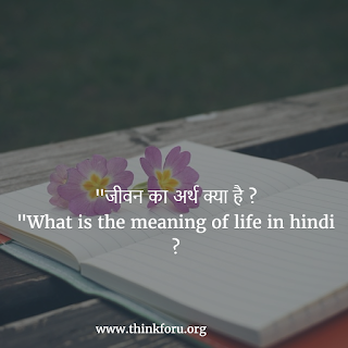 जीवन का अर्थ क्या है What is the meaning of life in hindi
