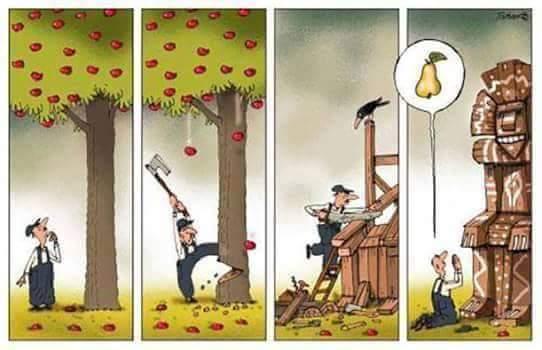 Una imagen vale más que mil palabras (3)