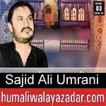 https://www.humaliwalyazadar.com/2018/09/sajid-ali-umrani-nohay-2019.html