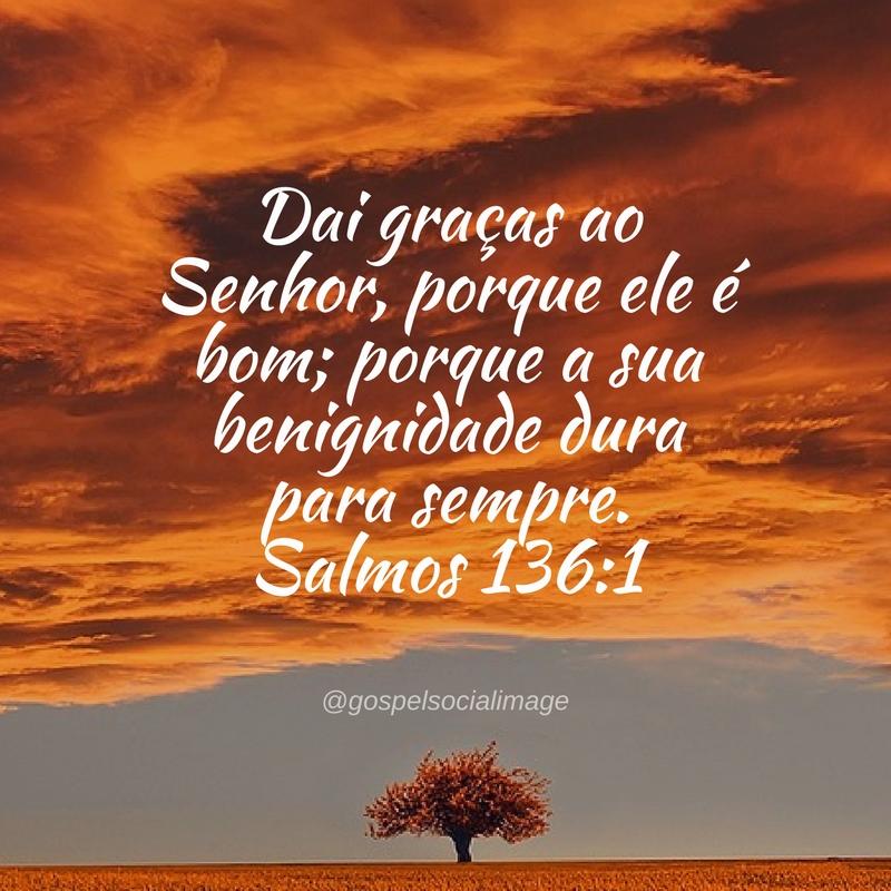 Louvai ao Deus dos deuses, porque a sua benignidade é para sempre. SL 136:2 Louvai ao Senhor dos senhores, porque a sua benignidade é para sempre. SL 16:3