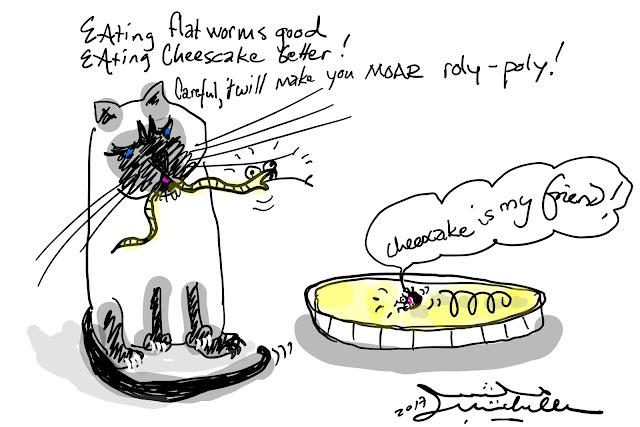Roly-polies  like cheesecake
