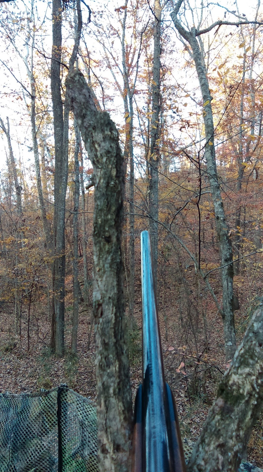 pros bowhunting tips from deer ground hunting a blind blinds