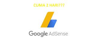 cara-lolos-review-site-adsense-terbaru-2019