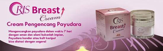 Produk Oris Breast Cream Pengencang Payudara
