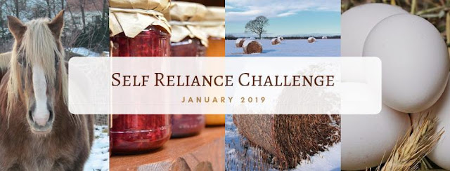 Join me in the self-reliance challenge, January 2019
