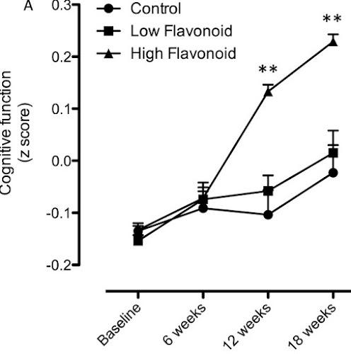 フラボノイド 認知機能