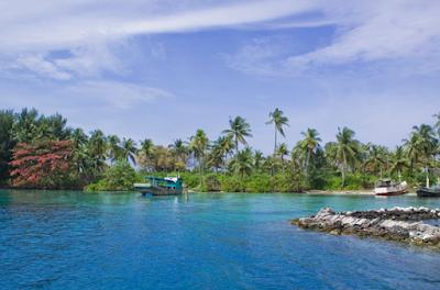 Wisata Pulau Menjangan Bali Untuk Snorkeling dan Diving