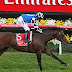 Former Melbourne Cup Winner - Protectionist still a healthy competitor