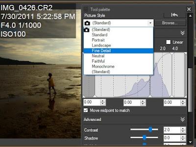 Merubah Picture Style Pada File RAW hasil kamera Canon menggunakan Canon DPP