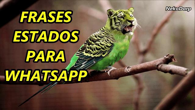 Frases Estados Para Whatsapp Originales Nekodarp Frases De La Vida
