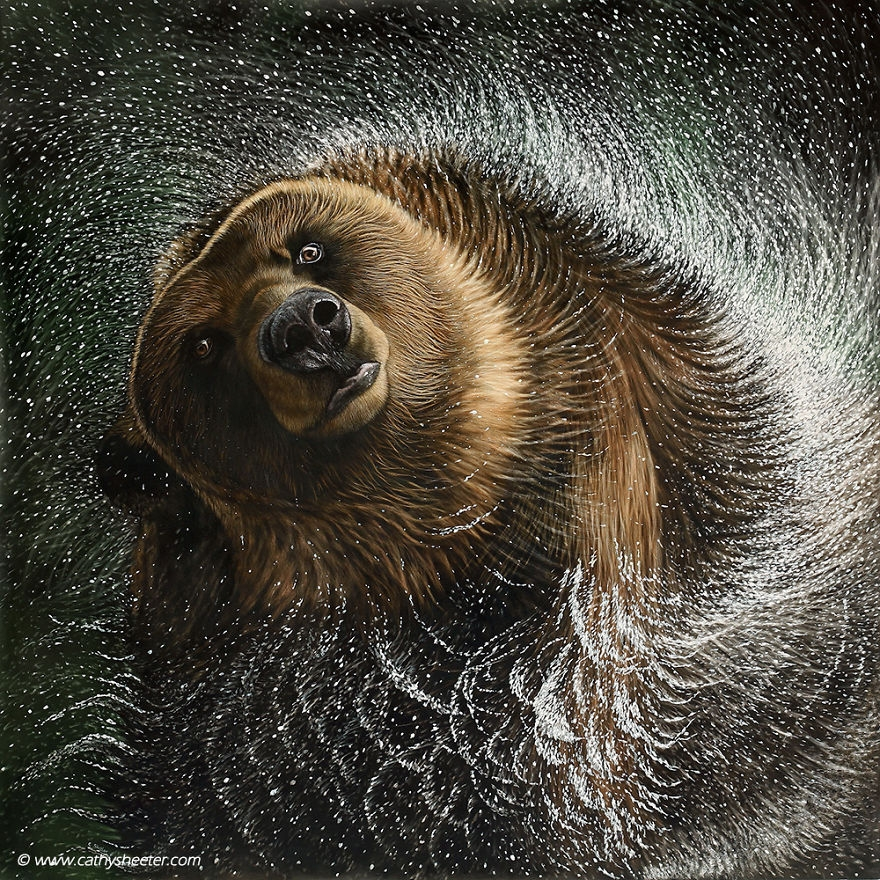11-Grizzly-Bear-Spin-Cycle-Cathy-Sheeter-Hyper-Realistic-Scratchboard-Wild-Animal-Drawings-www-designstack-co