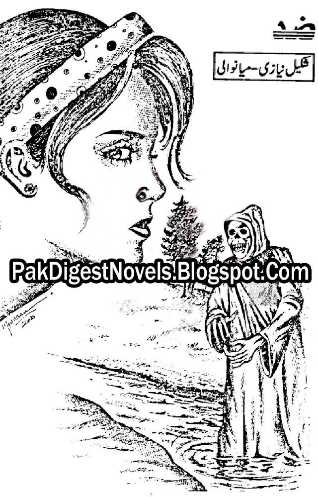 Zid Novel By Shakil Niazi Pdf Free Download