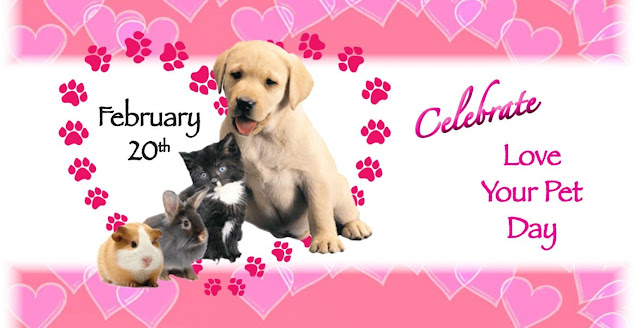 National Love Your Pet Day, February 20th