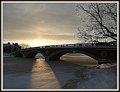 John W. Weeks Bridge en Cambridge durante Nemo