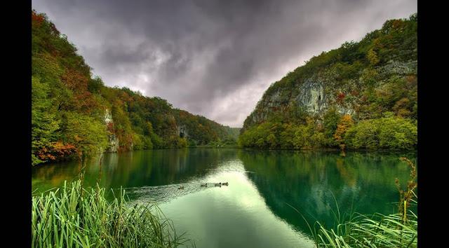 جولة سياحية أجمل البلاد مستوى العالم كرواتيا بليتفيتش Ducks-at-Plitvice-Lakes.jpg