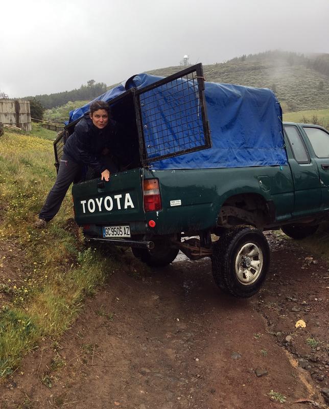 Как спастись от дождя на Гран-Канарии