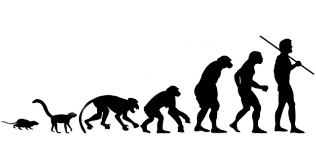 Does evolution make us or are we just drifting that way?