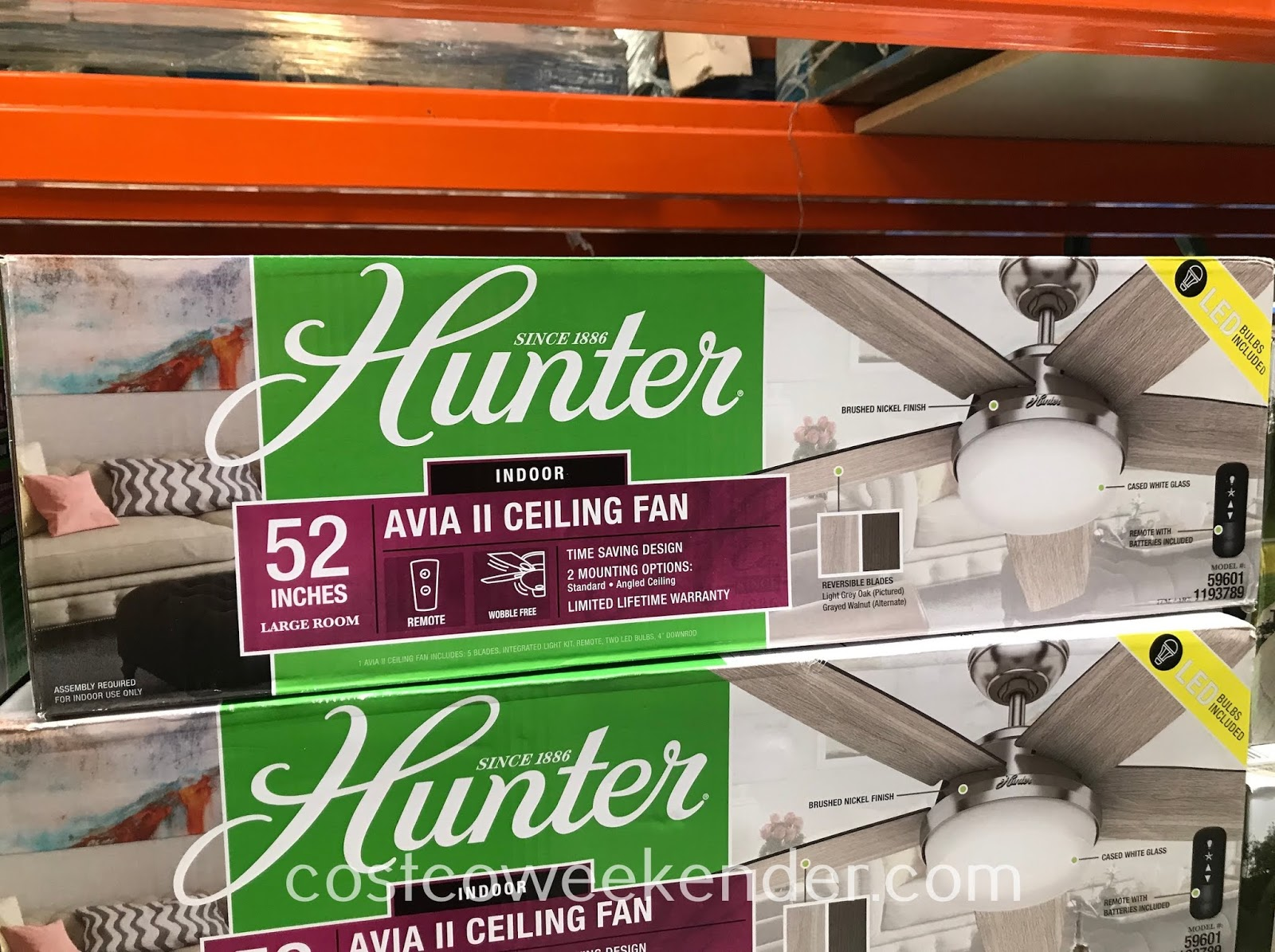 Keep your home cool this summer with the Hunter Avia II Ceiling Fan