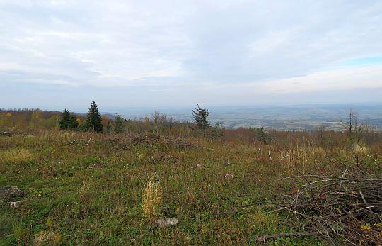 Widok na Pogórze Jasielskie.