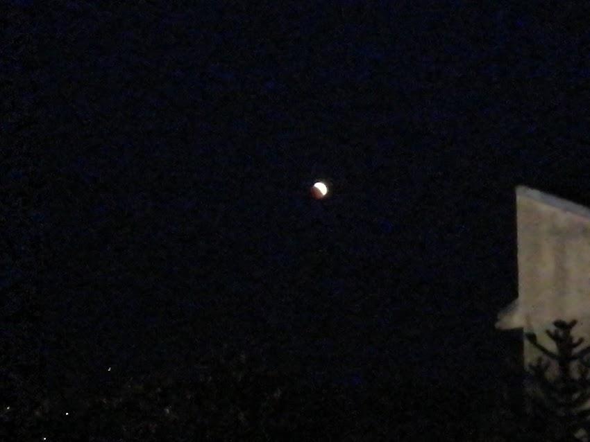 L'eclissi di Luna del secolo - Ecco Le Mie Foto