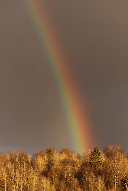 rainbow_sateenkaari_finland