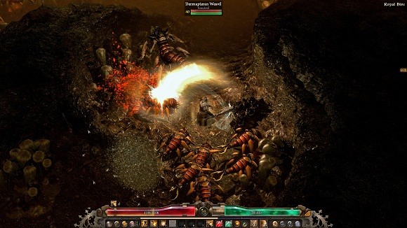 grim-dawn-pc-screenshot-www.ovagames.com-5