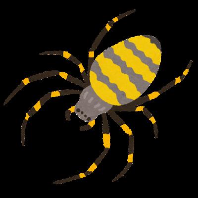 女郎蜘蛛のイラスト