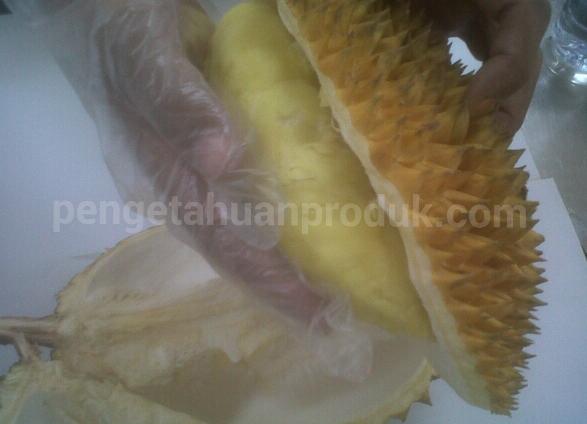 Cara Membelah Durian, Paling Mudah dan Aman Terkini
