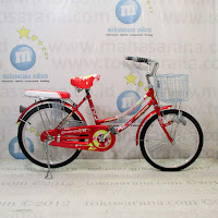City Bike Highwind 507 20 Inci