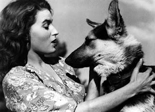 Imagen capturada de la película: El lobo de la Sila. / Il lupo della Sila