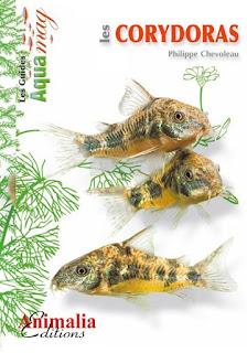 http://www.animalia-editions.com/poissons/81-les-corydoras.html