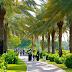 В Дубае появился парк Корана
