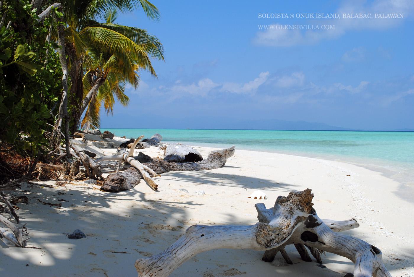 Onok Onuk Island Balabac; Palawan; Soloista