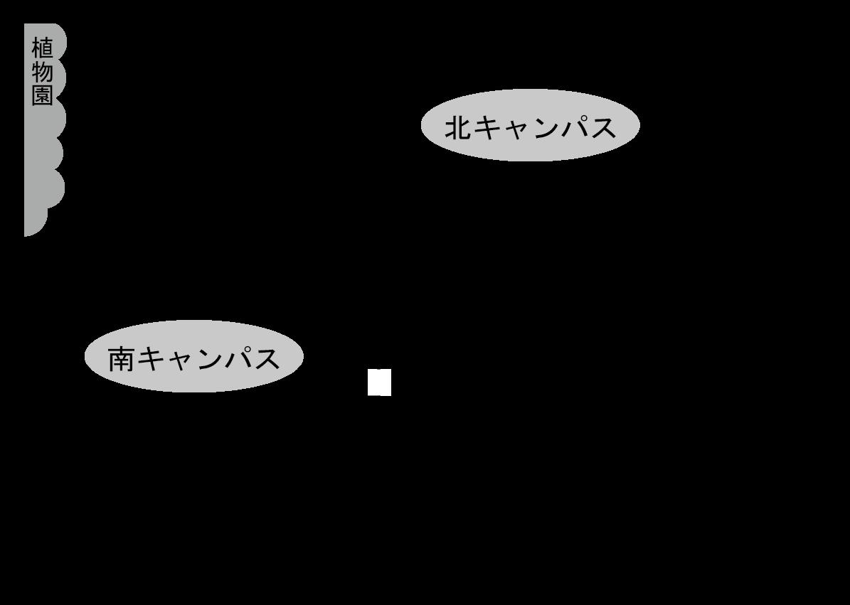 東北大学新聞 オープンキャンパス号2016: 【キャンパス紹介】川内キャンパス ~文学部・経済学部・法学部・教育学部~